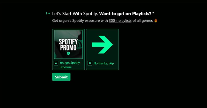 Spotify Music Promotion Service
